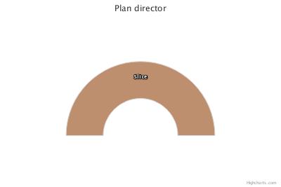 Planificación (existencia de Plan director)