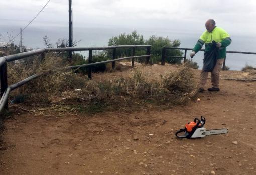 Benidorm neteja i esbrossa prop de 12.000 metres quadrats a Serra Gelada...