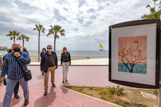Benidorm exhibe tres series fotográficas del alicantino José Carlos Bernabeu