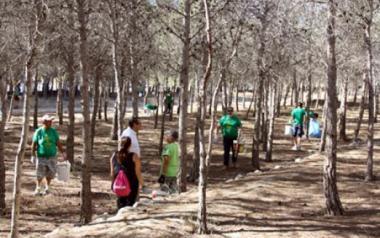 Once empresas optan a ejecutar la primera fase del Parque de la Séquia Mare