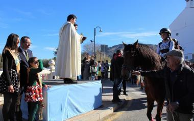 Centenares de personas asisten en la ermita a la tradicional bendición de animales de Sant Antoni