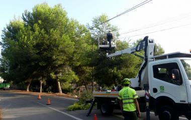 Los servicios técnicos municipales atienden las propuestas de los vecinos en 24 horas