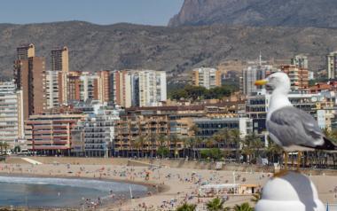 Benidorm aprova 1,6 milions d'euros en ajudes directes a més de 130 allotjaments turístics