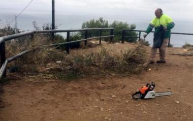 Benidorm neteja i esbrossa prop de 12.000 metres quadrats a Serra Gelada