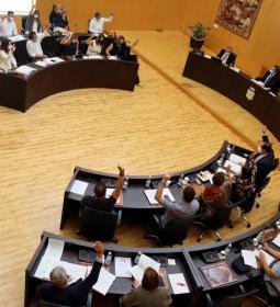 El pleno aprueba una moción de apoyo y solidaridad con los evacuados y damnif...