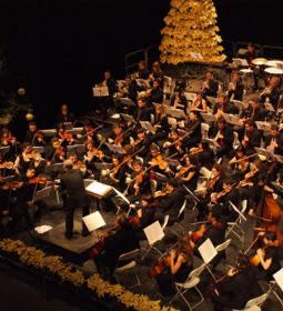 Alicante Symphony Orchestra will offer a concert on Friday at Julio Iglesias…