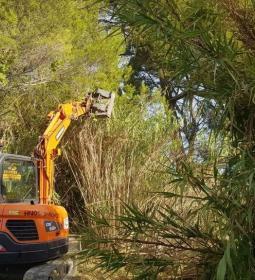 Benidorm escomet la neteja dels barrancs Barceló i Derramador per a minimitza…